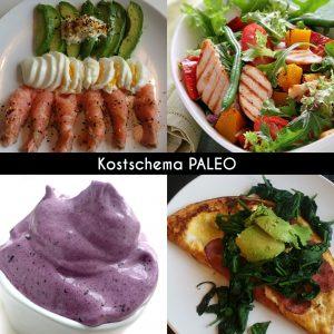 Kostschema - PALEO